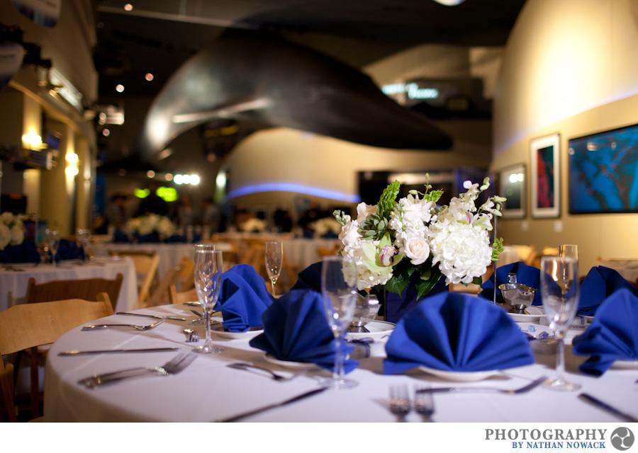 Florida Beach Wedding With Aquarium Reception: Cerritos Library Wedding